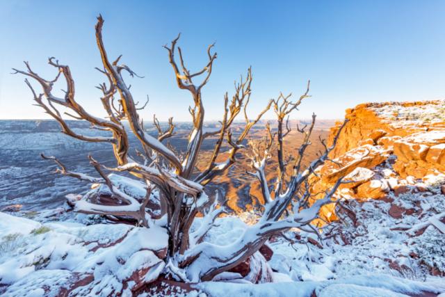 Canyonlands National Park, Utah USA