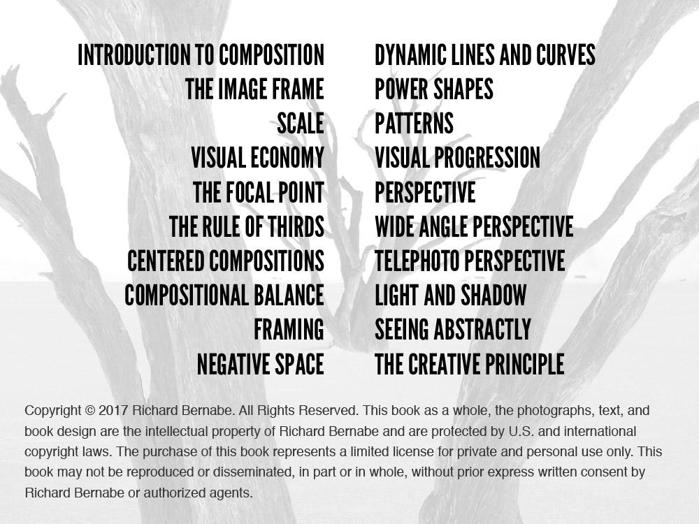 Creative Composition-4-2