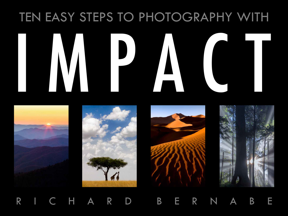Ten easy steps to photography with impact richard bernabe free e book ten easy steps to photography with impact fandeluxe Choice Image