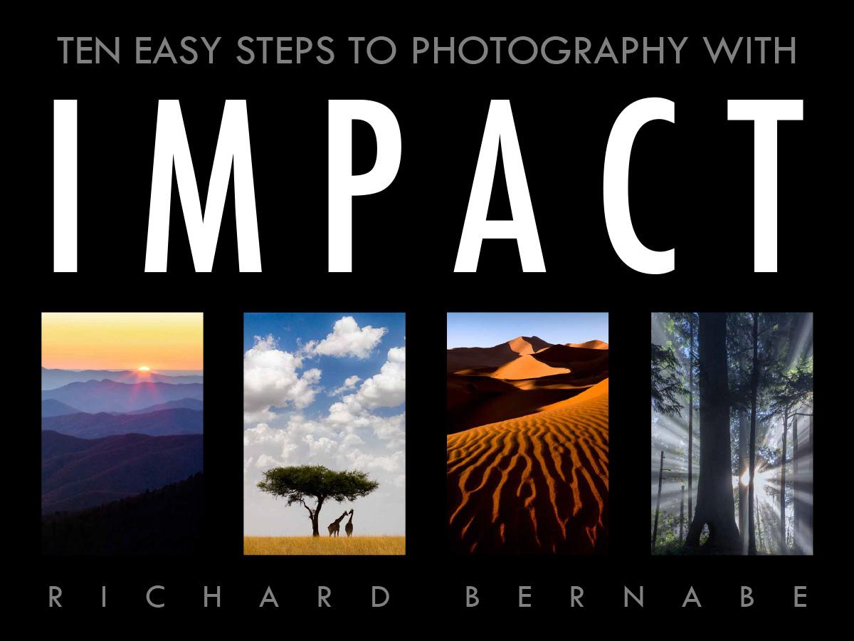 Impact E-book